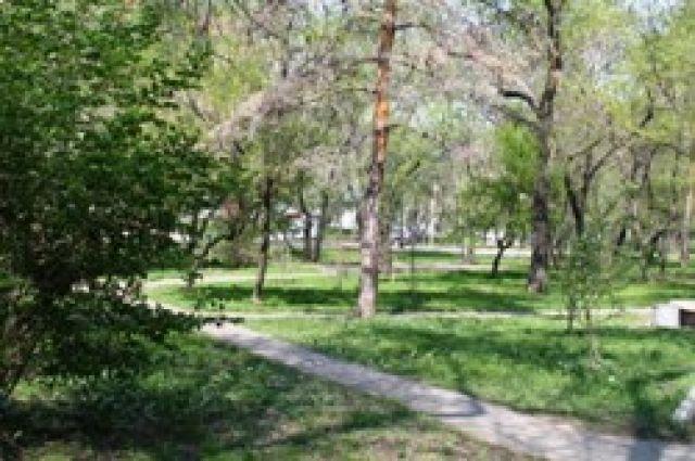 На улицах Челябинска высадили более 6 тысяч деревьев