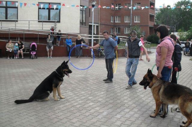 В Екатеринбурге пациентам детской онкологии показали шоу собак