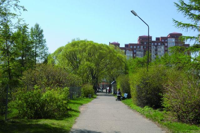С застройкой города можно бороться при помощи создания рекреационных зон.