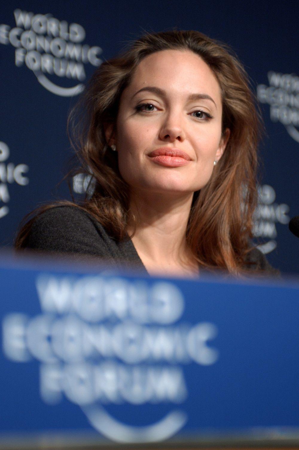 Общественная и политическая активность Анджелины Джоли не ограничивается лишь поездками в бедствующие страны – она выступала с докладом на Всемирном экономическом форуме в Давосе в 2005 году и других крупных встречах в США и Европе.