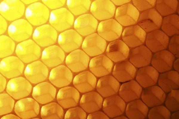 Мед. Содержит железо, фосфор, магний, кальций, сера, витамины А и группы В.