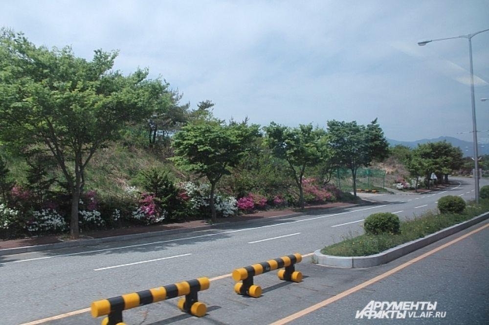 Вдоль шоссе, ведущим из аэропорта в клумбах высажены цветы. И никто не рвёт.