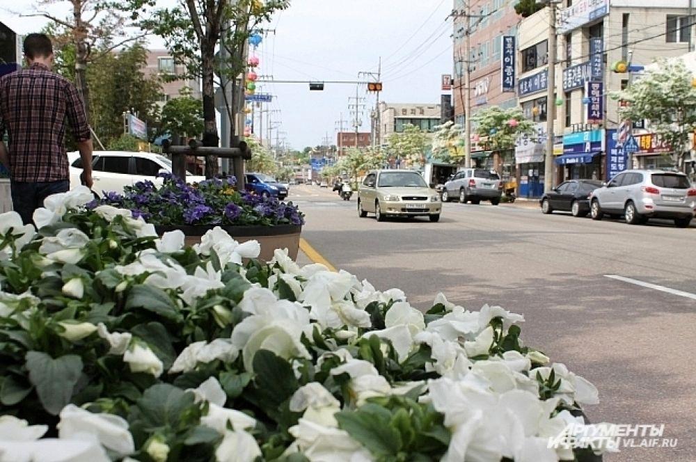 По пути к рыбному рынку приморские журналисты не уставали удивляться разбитым вдоль дороги клумбам. Красиво и никто цветы не рвёт.