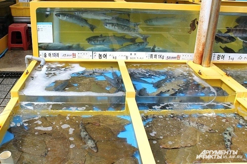 На рыбном рынке - всё только свежее. И шевелится.