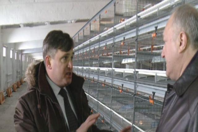 А. Ажмяков докладывает губернатору о состоянии дел на птицефабрике