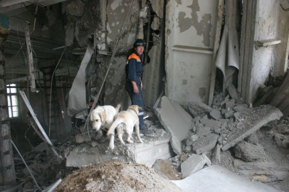 Собаки ищут людей после взрыва дома на ул. Телевизорной в 2009 году.