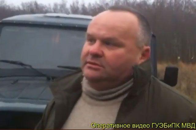 ярославский первый криминальные новости о мошенничестве декабрь 2015 лучшим материалом