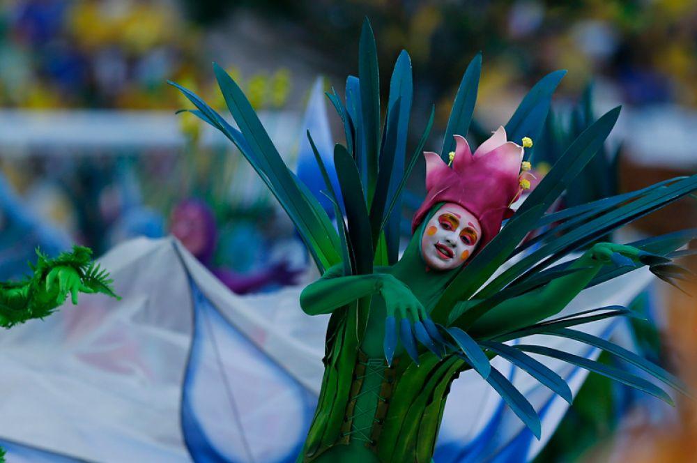 Постановщики шоу стремились показать миру уникальность природы Бразилии, олицетворяя растения страны в костюмах актеров.