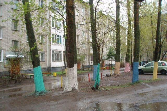 В 2014 году в Екатеринбурге посадят около пятисот новых деревьев