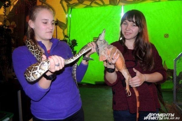 Рептилии дружат между собой.