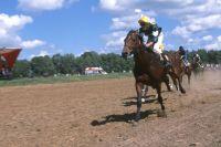 Конные скачки состоятся на празднике «Сабантуй-2014».