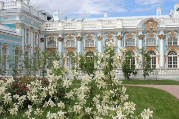 Царское Село каждый день посещают больше тысячи туристов.