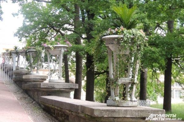 В Царском Селе сохранился один из двух висячих садов России.