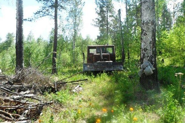С незаконных лесоделян изъяли всю технику.