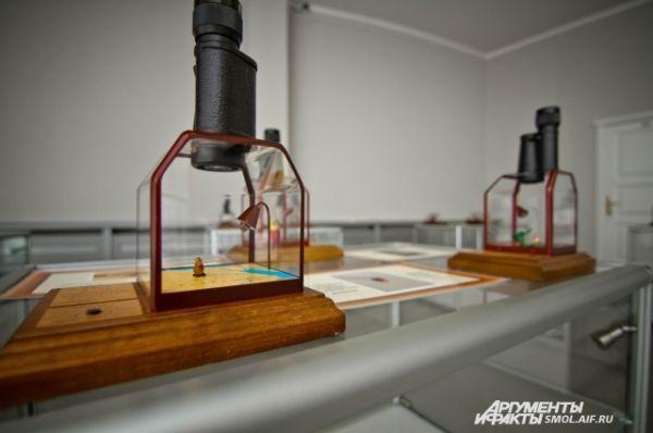 К каждой микроминиатюре полагается свой микроскоп.