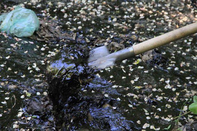 Разлившаяся нефть - серьёзная угроза природе.