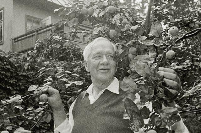 Корней Чуковский в своем фруктовом саду на подмосковной даче. 1957 год.