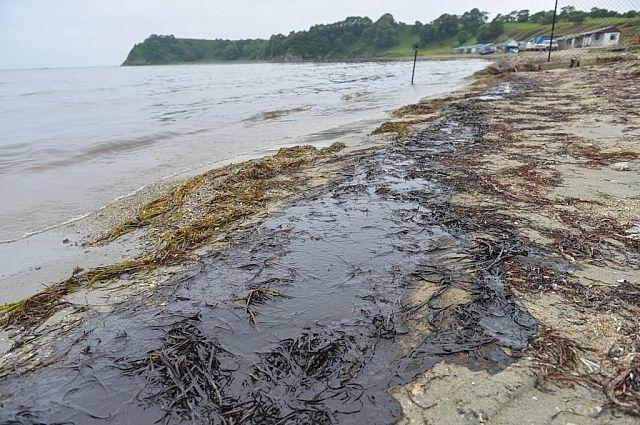 Так выглядело побережье Хасанского района после разлива нефти.