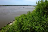 Берег Амура у Хабаровска