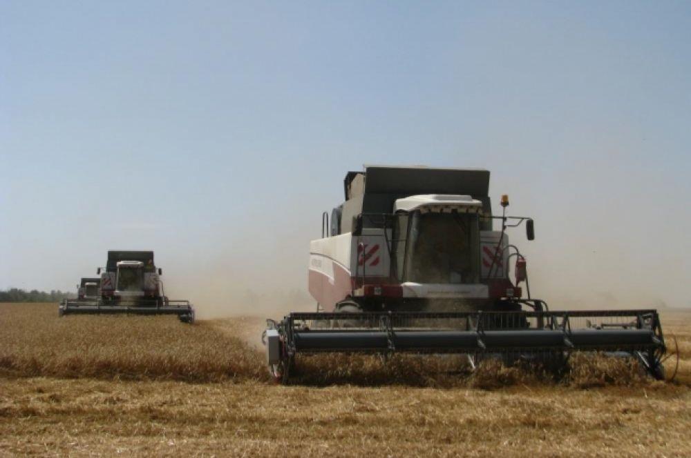 Так на Дону убирали урожай в 2014-м году.