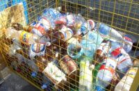 На улицах Калининграда установили 40 контейнеров для сбора пластика.