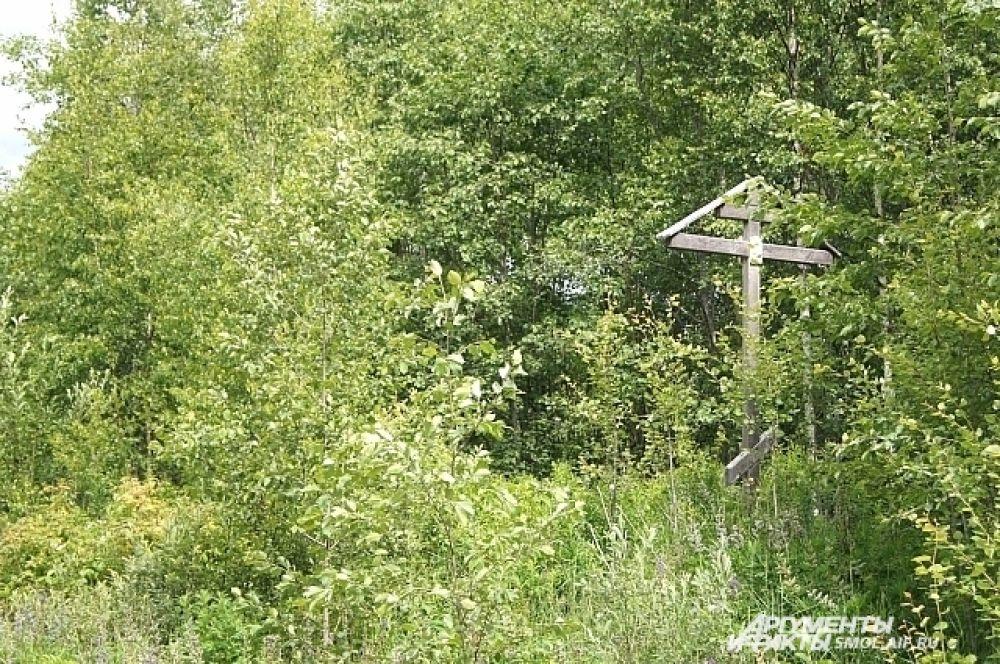 Поклонный крест по дороге к истоку.
