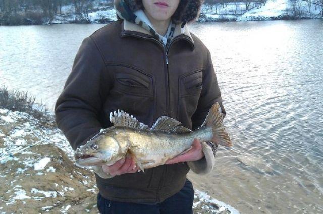 любители рыбалки ставрополья