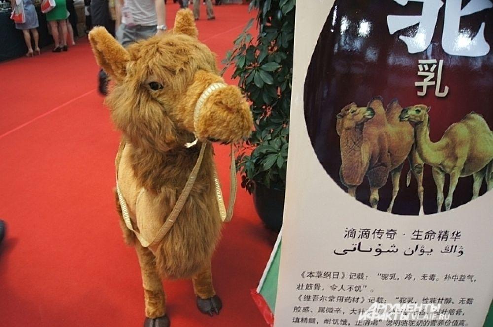 В Китае тоже есть верблюды.