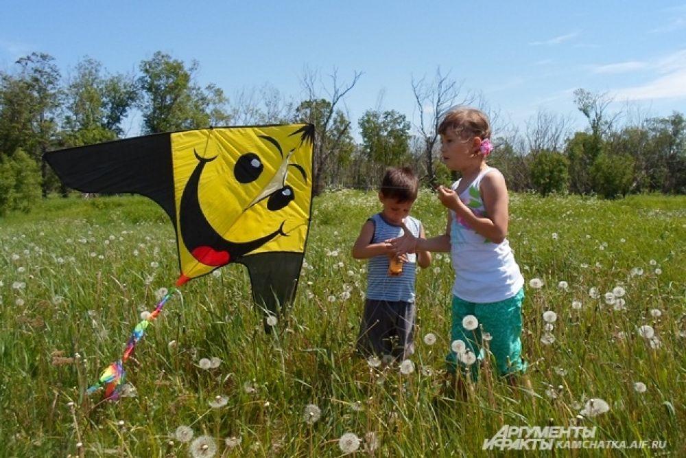Дети запускали воздушных змеев.