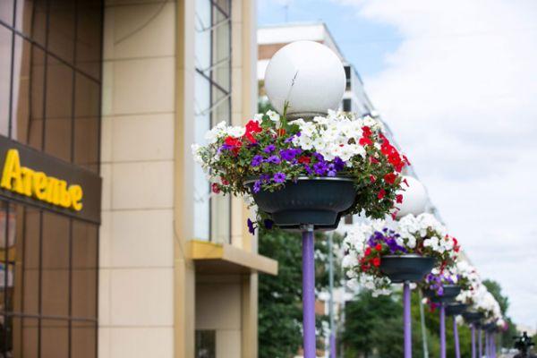 В этом году площадь цветников охватила все те территории, на которых проводилось озеленение в период подготовки к Универсиаде. Так, в дополнение к высаженным в прошлом году вдоль протоки Булак пирамидальным тополям, установлены 480 цветочных кашпо