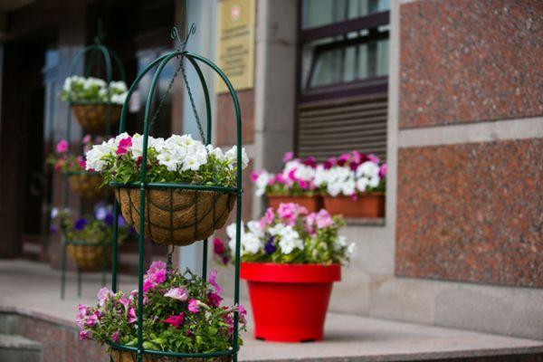 Параллельно создаются цветочные композиции в парках, скверах и садах, проводятся работы по оформлению дорог