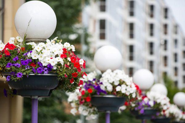 Многие улицы, в том числе Лево-Булачная и Право-Булачная, Салимжанова, Эсперанто, Ершова, Марджани, Чистопольская, Декабристов уже украшают цветочные клумбы и кашпо