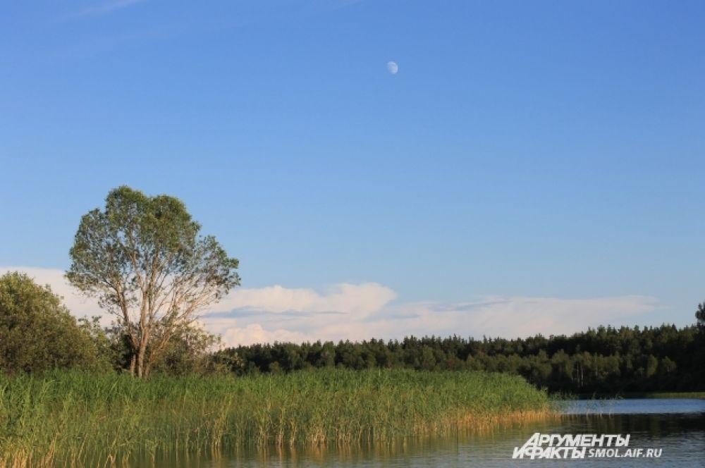 Скрылась за рекою Белая луна, Звонко побежала Резвая волна. (Есенин)