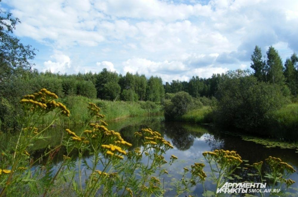 А вокруг зеленеют луга, И стоит, словно зеркало, пруд, Отражая свои берега. (И. А. Бунин. На пруде)