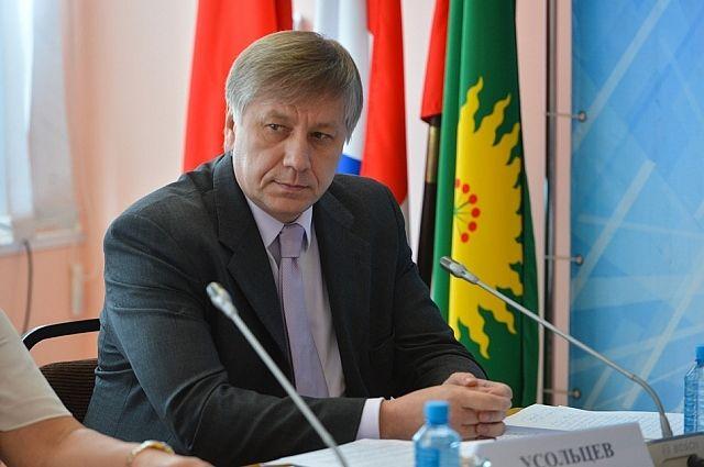 Вице-губернатор Василий Усольцев.