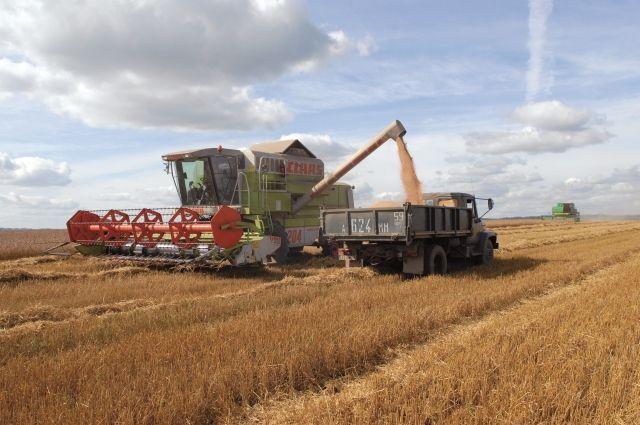 На кунгурской земле происходят позитивные изменения. К примеру, в этом году в районе увеличат посевные площади под кукурузу и озимые.
