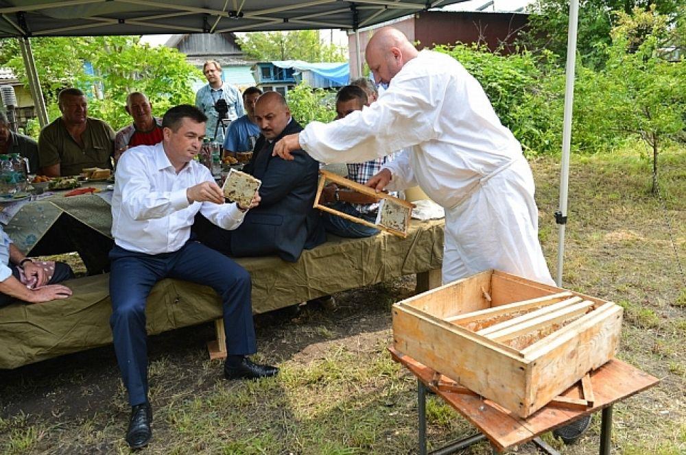 Пасечники рассказали главе края, что сегодня одна из главных проблем в сфере заготовки меда - вырубка липы.