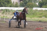 На новых площадках любители конного спорта смогут обрабатывать трюки.