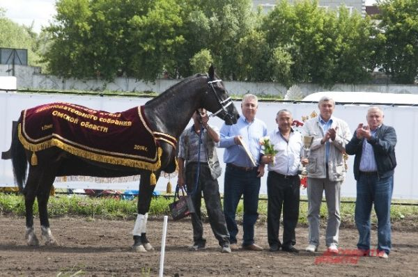 Победители соревнований по конному спорту.