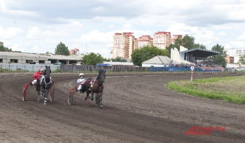 Соревнования по конному спорту.
