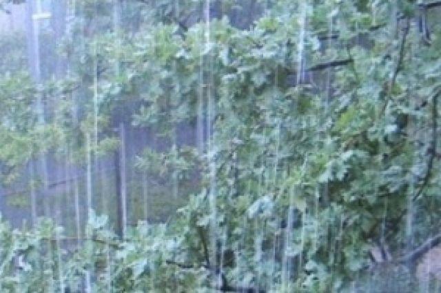 Завтра в области вновь ожидаются очень сильные дожди