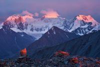 Белуха на рассвете с перевала Кара-Тюрек.