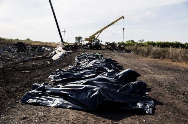 Тела погибших с «Боинга» Malaysia Airlines