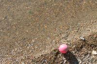 В реке Иркут неподалеку от села Жемчуг найдено тело малолетнего ребенка.