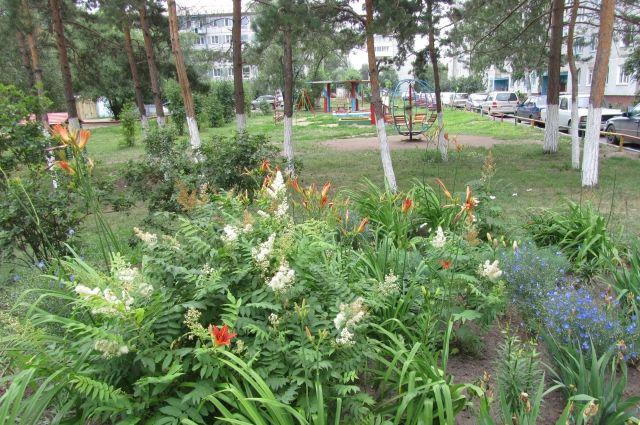 Двор на ул. Волгоградская, 26.