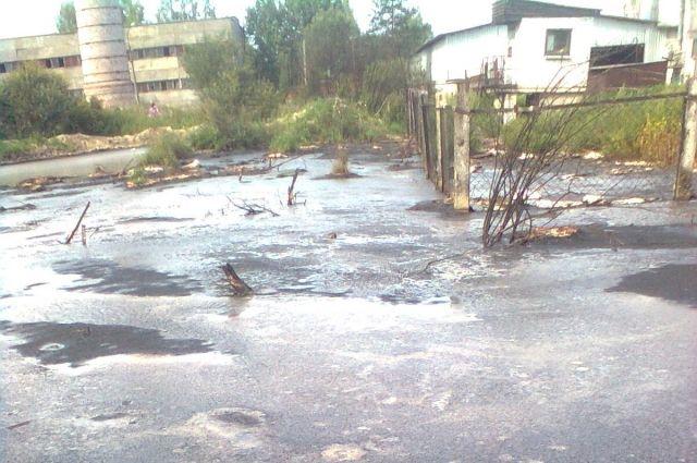 од за годом посёлки Кировского района топит нечистотами.