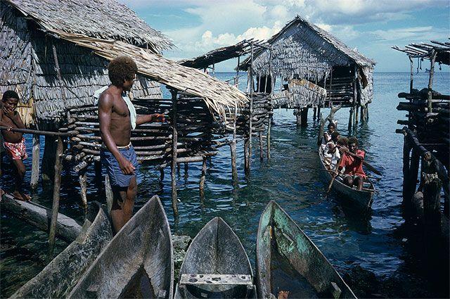 На островах Меланезии.