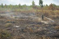 Тушение торфяных пожаров в Тверской области.