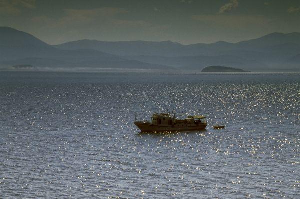 В озере Байкал присутствует 27 уникальных видов рыб, не встречающихся в других озёрах.
