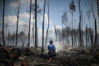 На месте лесных пожаров в районе посёлка Старое Мелково Конаковского района Тверской области.